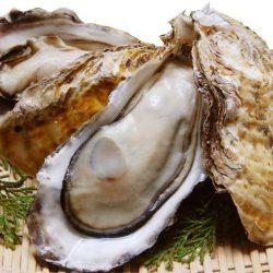 【BUY 2 AT 10% OFF】Sashimi Grade Frozen Oyster with Shell from Okayama ~10-12pcs x 2 / 岡山県産 生食用殻付き牡蠣 Lサイズ~10-12個入【期間限定お試しセール中!】