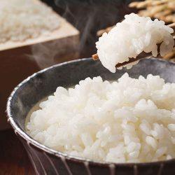 【SALE!】Iwate Furusato Rice 5kg / 岩手ふるさと米 5kg / 日本の美味しいお米