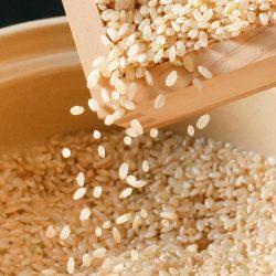 Organic Brown Rice (Sasanishiki) 【令和2年度新米】宮城県産 無農薬 自然栽培ササニシキ玄米 3KG