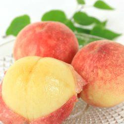 【SEASONAL】Momo (Peaches) from Yamanashi (2 pieces) /   もも 桃