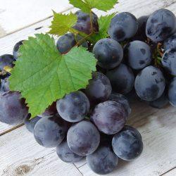 【SEASONAL】Kyoho Grapes from Japan ~300g / 巨峰 【Delivers on Fri & Sat | 金曜日&土曜日配達分受付中】