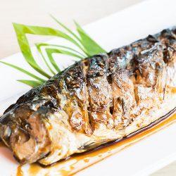 【LIMITED】Frozen Sagoshi Sawara (Spanish Mackerel) Fillet for Grilling from Ishikawa ~250g / 冷凍さわらフィーレ(焼物用)